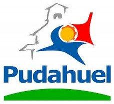 logo pudahuel