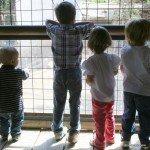 miradores Buin Zoo