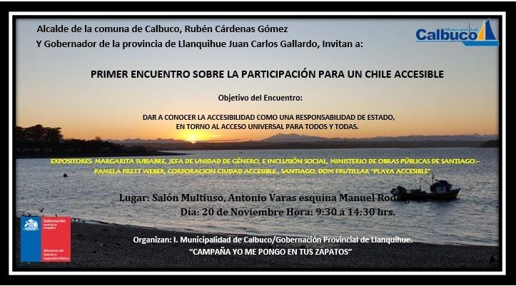 1ER. ENCUENTRO PARA UN CHILE ACCESIBLE_Calbuco