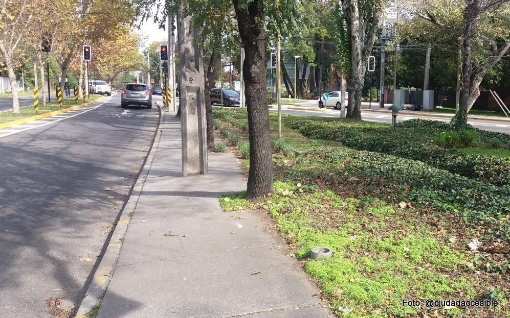 Foto de vereda obstaculizada con postes y árboles.