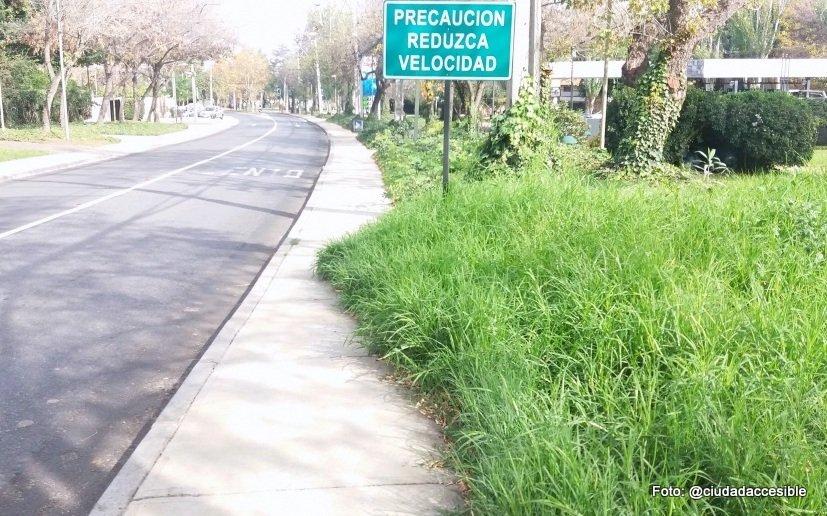 Foto de vereda obstaculizada por vegetación