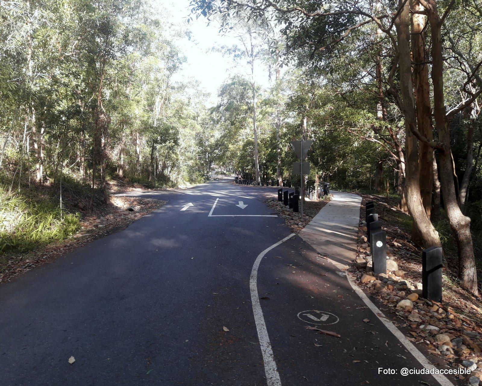 ruta peatonal demarcada junto a calzada vehicular en Parque Mount Coo-tha Brisbane