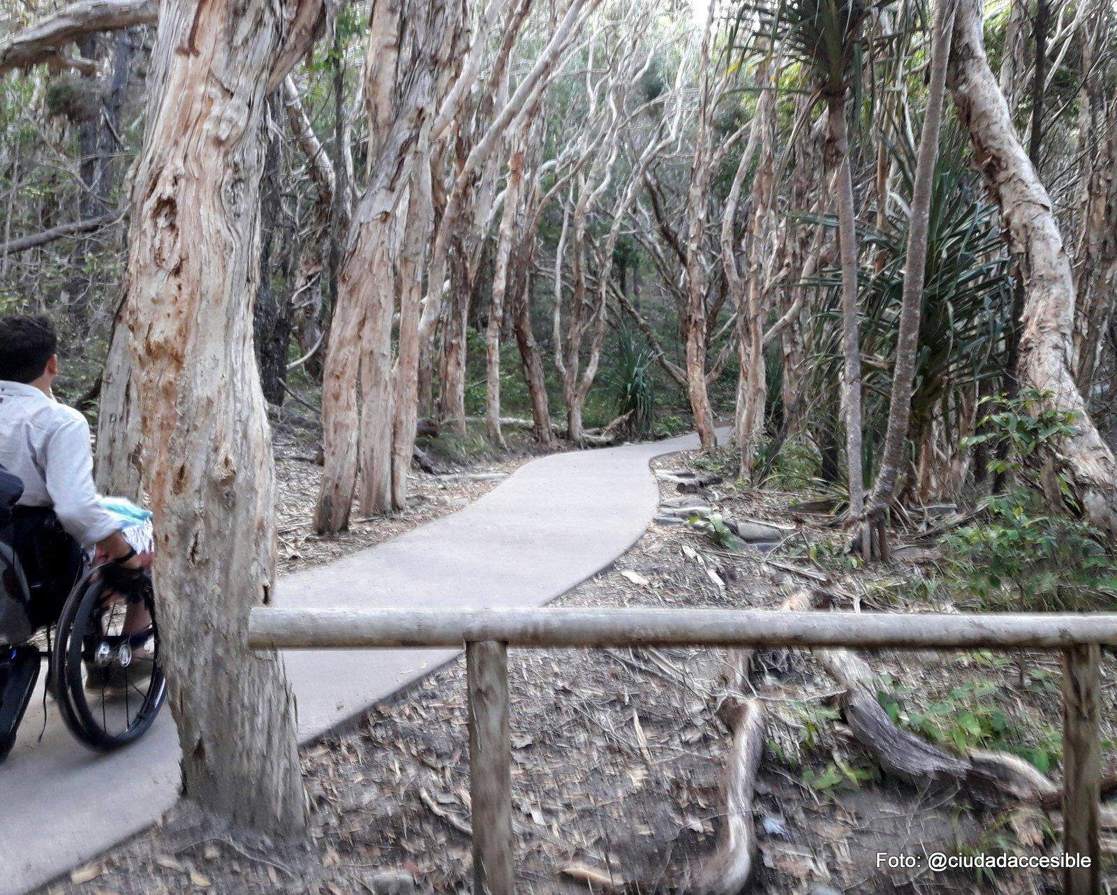 persona en silla de ruedas por un sendero pavimentado en Playa Nussa Brisbane