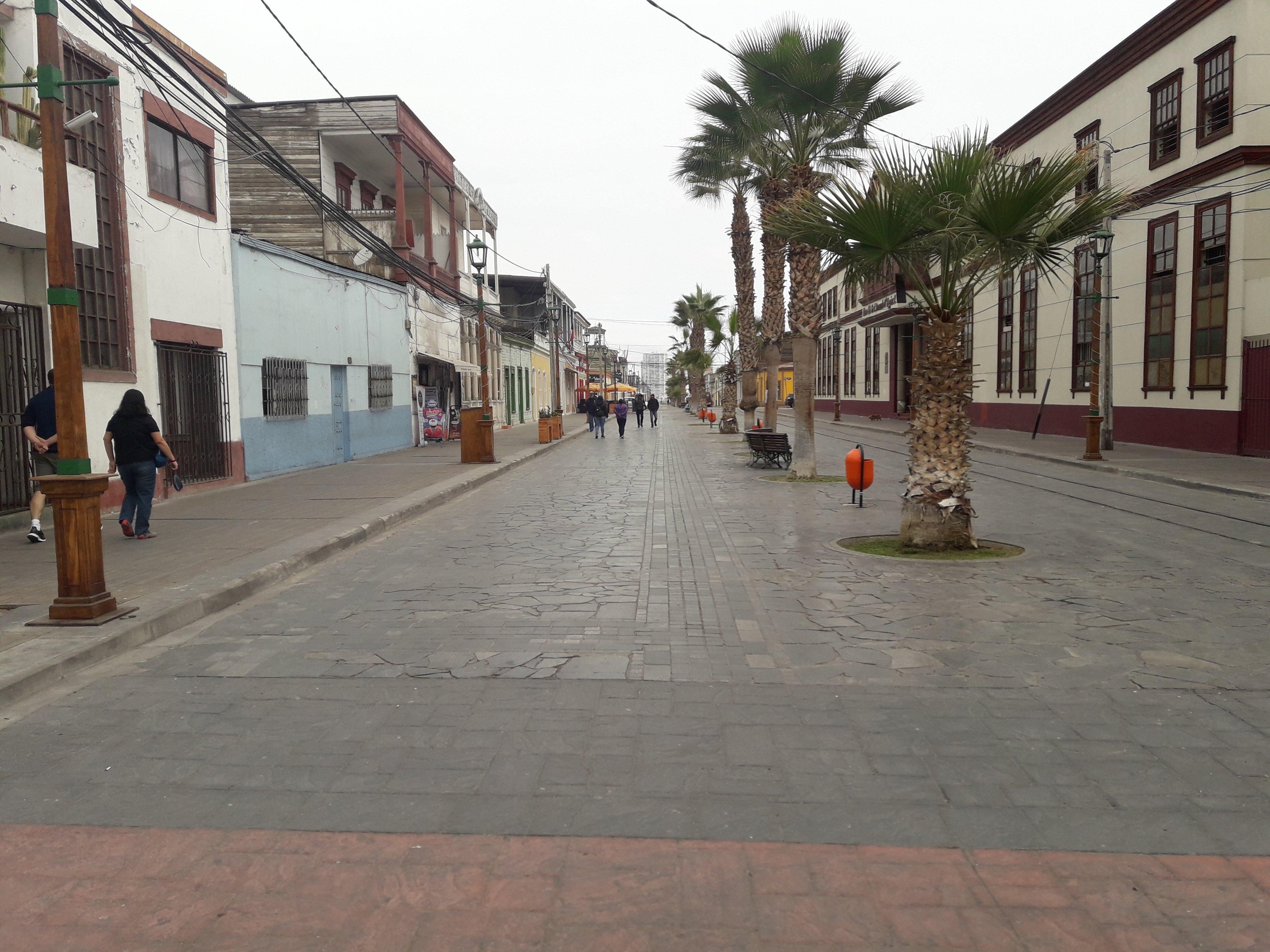 vista del paseo peatonal con palmeras en el centro de la calzada