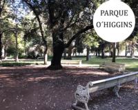 arbol rodeado de escaños en el parque